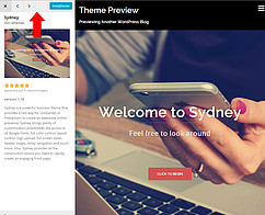 WordPress Theme installieren Screenshot 6